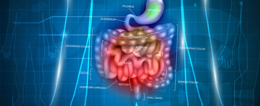 Constipation Causes and Remedies
