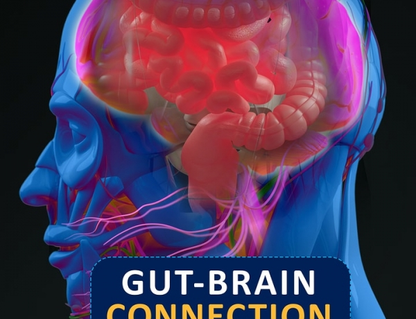 Gut Health and How it Relates to Mental Health
